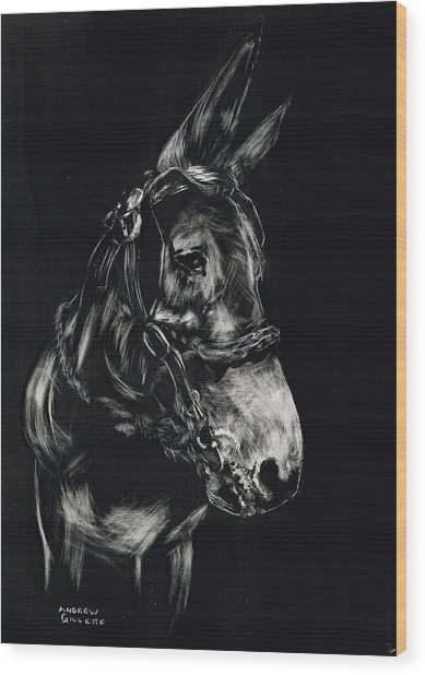 Mule Polly In Black And White Wood Print