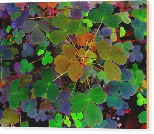 Multi-coloured Leaves Wood Print