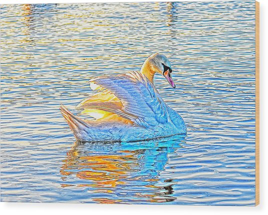 Multicolour Swan Wood Print