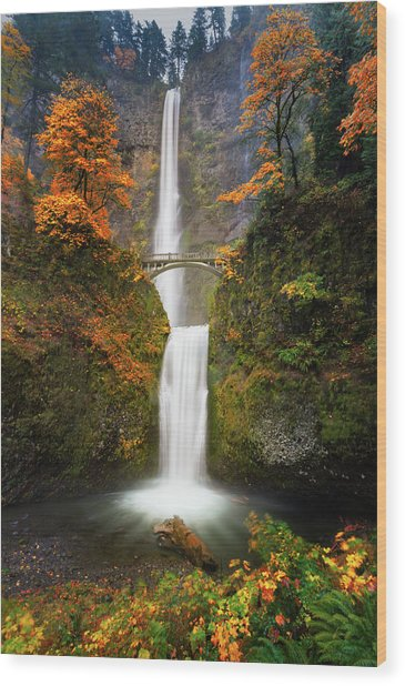 Multnomah Falls In Autumn Colors Wood Print