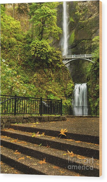 Multnomah Falls,oregon Wood Print