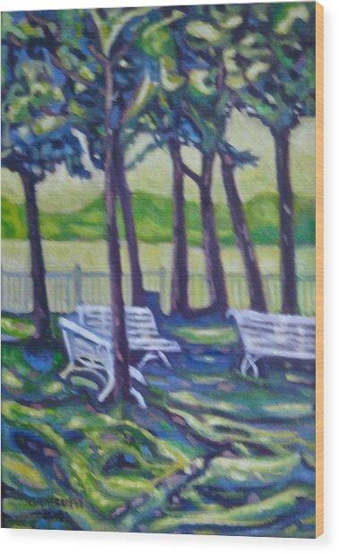 Mundaka Park Wood Print