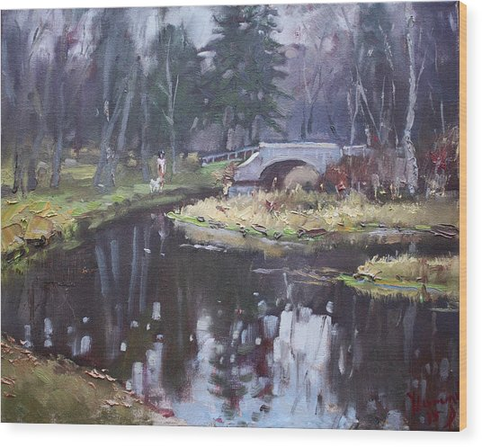 Murder Creek Ny Wood Print