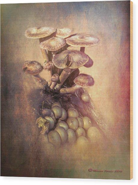 Mushrooms Gone Wild Wood Print