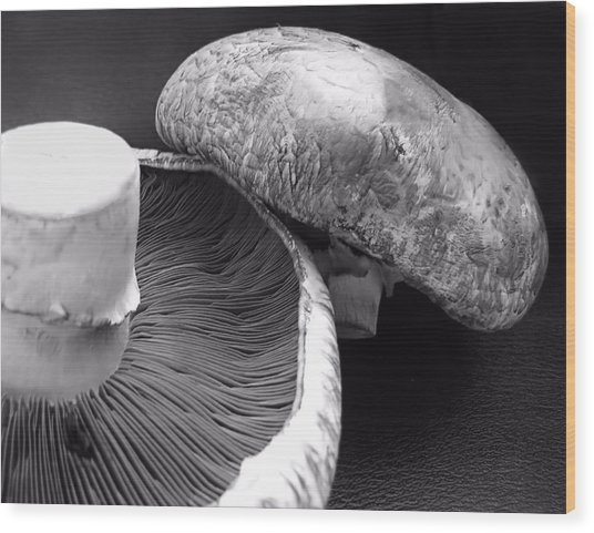Mushrooms In Black And White Wood Print