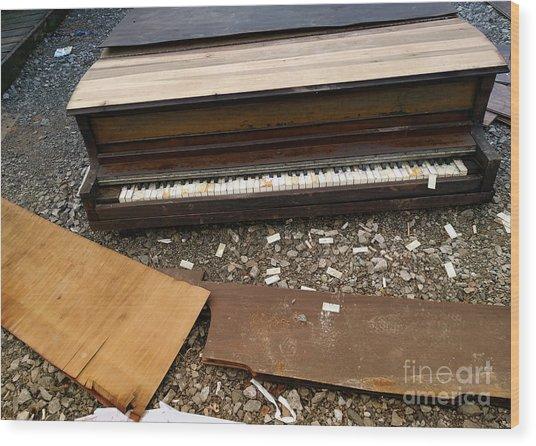 Music Waste  Wood Print by Steven Digman