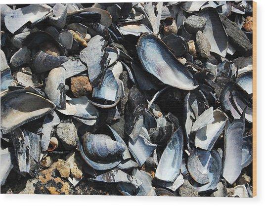 Mussel Shells Wood Print by Rebecca Fulweiler