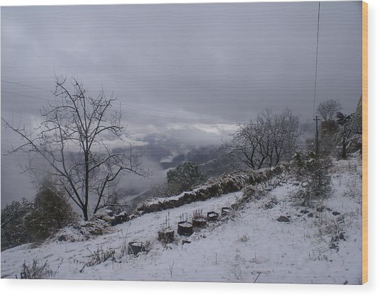 Mussoorie Winter - 2 Wood Print by Padamvir Singh