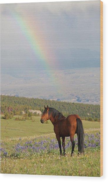 Mustang And Rainbow Wood Print