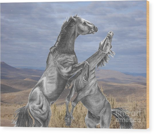 Mustang Battle Wood Print by Russ  Smith
