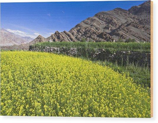 Mustard Field, Hemis, 2007 Wood Print