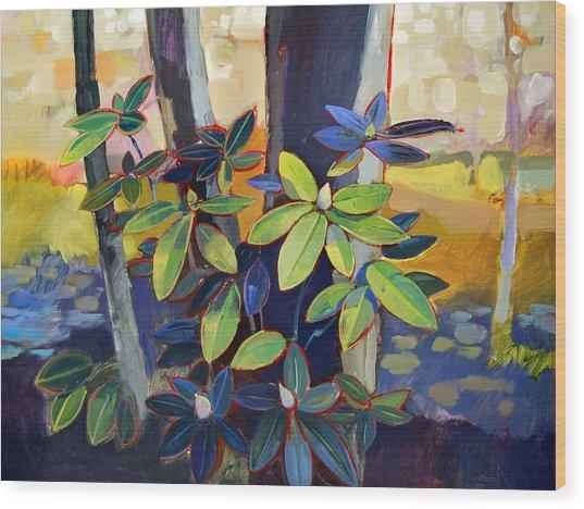 My Back Yard Wood Print by Farhan Abouassali