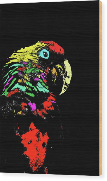 My Colorful Mccaw Wood Print