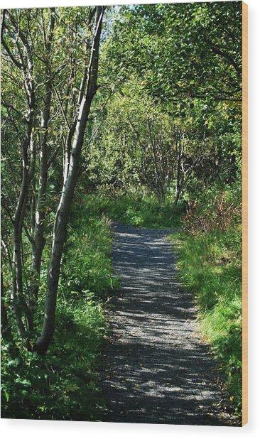 My Favorite Path Wood Print