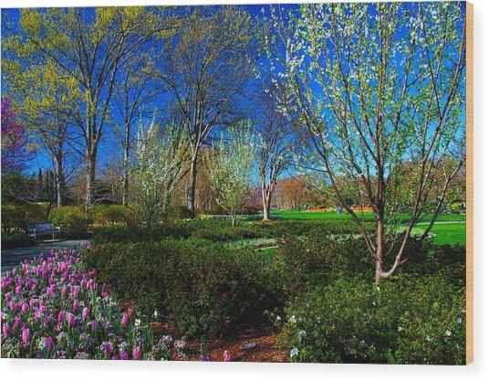 My Garden In Spring Wood Print