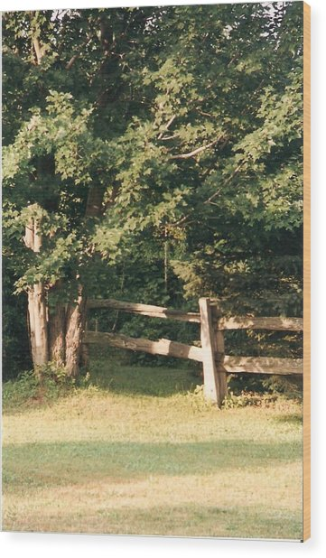 My Quiet Corner - Photograph Wood Print by Jackie Mueller-Jones