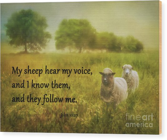 My Sheep Hear My Voice Wood Print