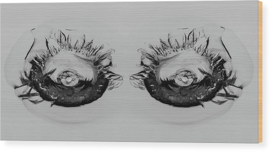My What Pretty Eyes You Have Wood Print