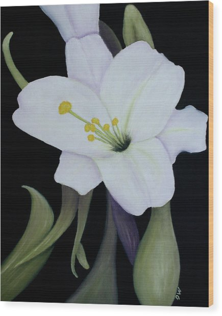 My White Lily Wood Print by Mary Gaines