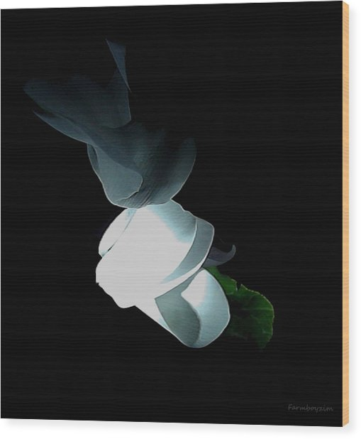 Mystery Flower Wood Print