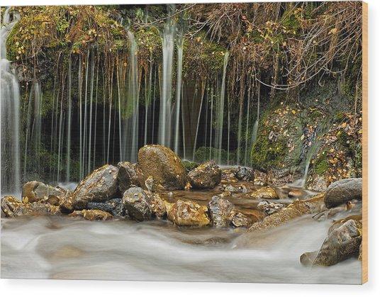 Mystery Stream Wood Print