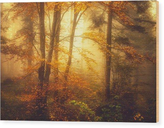 Mystic Fog Wood Print