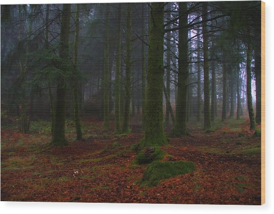 Mystic Forest Wood Print by Paulo Antunes