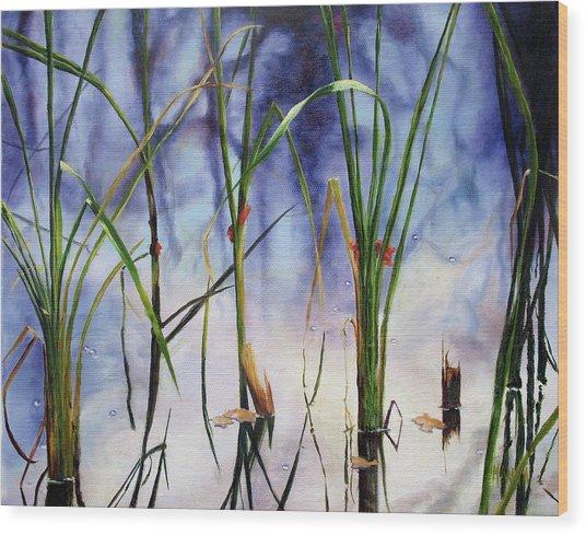 Mystic Pond Wood Print