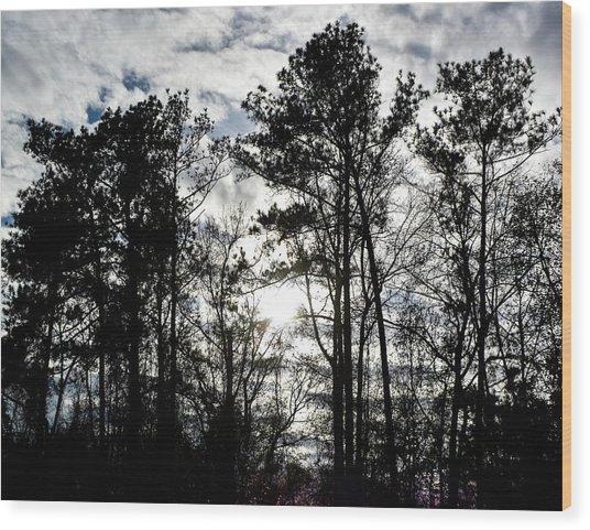 Mystic Wilderness Wood Print