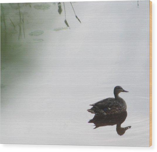 Mystical Duck Wood Print by Nancy TeWinkel Lauren