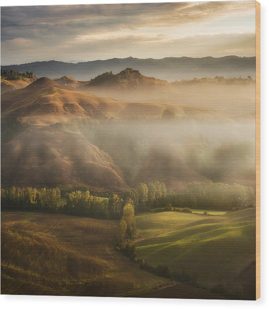 Mystical Waving Fields Tuscany Wood Print