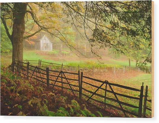 Mystique - A Connecticut Autumn Scenic Wood Print