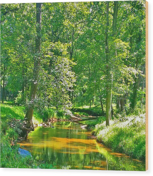 Nadine's Creek Wood Print