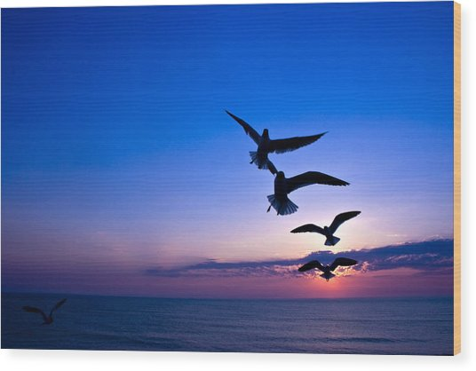Nags Head Sunrise Wood Print