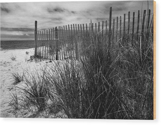 Nantucket Harbor Beach Dunes  Wood Print