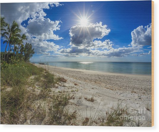 Naples, Florida Beach Wood Print