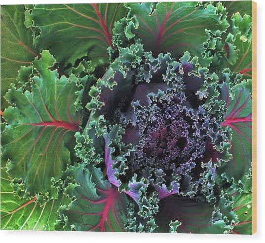 Naples Kale Wood Print