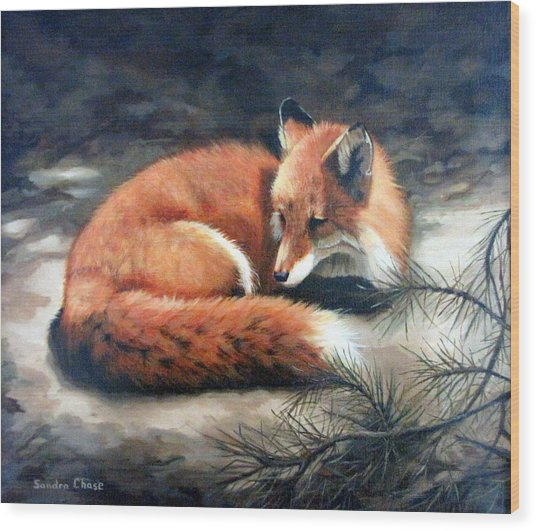 Naptime In The Pine Barrens Wood Print