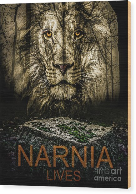 Wood Print featuring the photograph Narnia Lives by Michael Arend