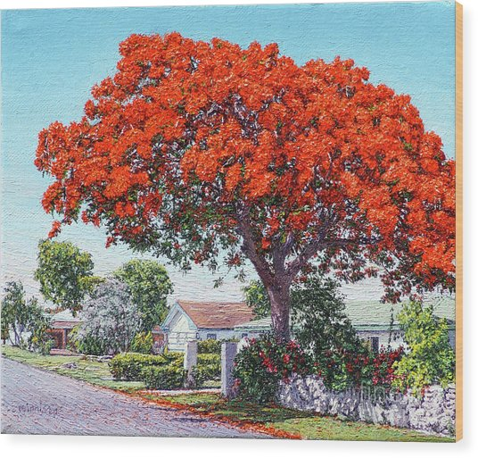 Nassau East Blvd.  Wood Print