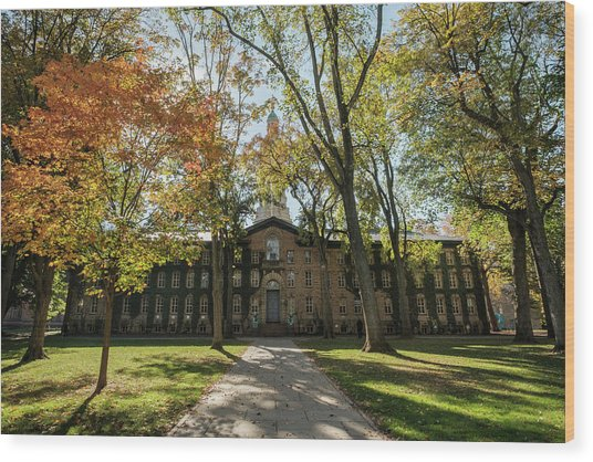 Nassau Hall Princeton University Wood Print