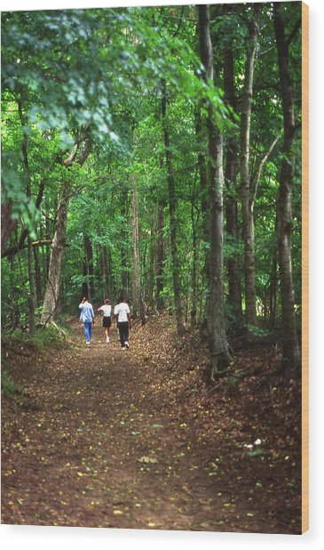 Natchez Trace Walkers Wood Print by Randy Muir