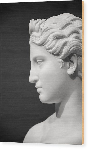 National Portrait Gallery Statue Profile Wood Print