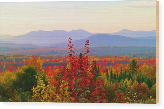 National Scenic Byway Wood Print