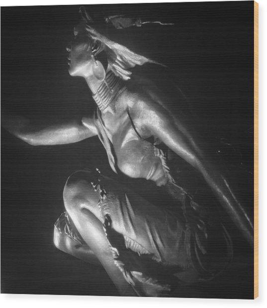 Native American Night Wood Print