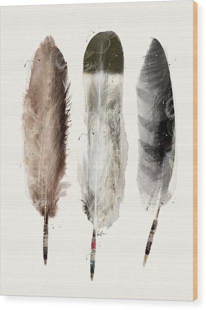 Native Feathers Wood Print