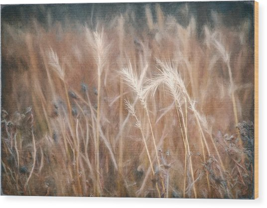 Native Grass Wood Print