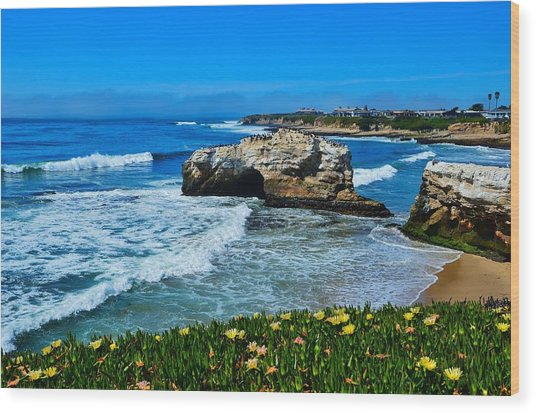 Natural Bridges State Park View Wood Print