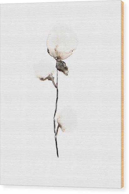 Natural Cotton Fine Art Print Wood Print
