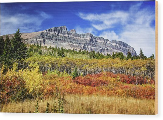 Natural Layers In Glacier National Park Wood Print